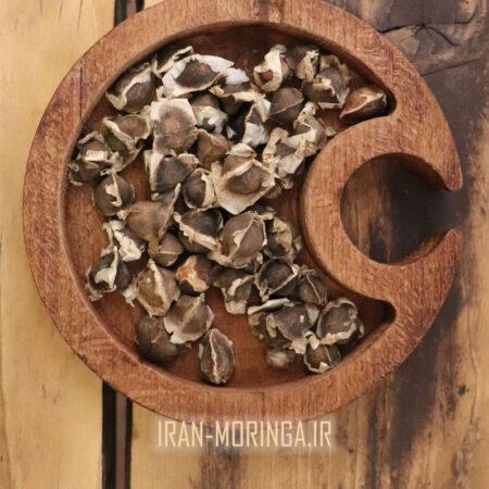 بذر مورینگا-ایران مورینگا