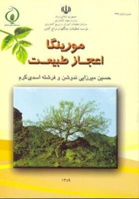 کتاب مورینگا اعجاز طبیعت